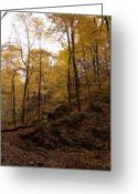 Anna Villarreal Garbis Greeting Cards - Autumn Scene II Greeting Card by Anna Villarreal Garbis
