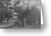 Nancy Stutes Greeting Cards - Black And White Country Scene Greeting Card by Nancy Stutes