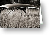 Old Volkswagen Car Greeting Cards - Bug in the Grass Greeting Card by Marilyn Hunt