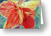 Canna Greeting Cards - Canna Lily Greeting Card by Tina Storey