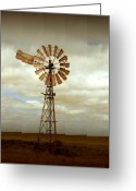 Metal Greeting Cards - Catch the Wind Greeting Card by Holly Kempe