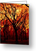 Tree Artwork Mixed Media Greeting Cards - Cental Park in Red Greeting Card by Diane C Nicholson