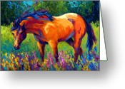 Mustang Greeting Cards - Dun Mare Greeting Card by Marion Rose