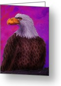 Eagle Art Greeting Cards - Eagle Crimson skies Greeting Card by Nick Gustafson