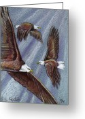 Eagle Drawings Greeting Cards - Eagles In Flight Greeting Card by John Keaton