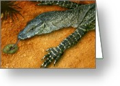 Lizard Greeting Cards - Eggs for Breakfast Greeting Card by Holly Kempe