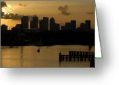 Florida Sunset Greeting Cards - Evening in Tampa Greeting Card by David Lee Thompson