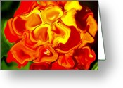 Flower Photograph Greeting Cards - Flora Rebare Bella Greeting Card by Robert OP Parrish