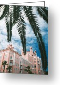 Florida Living Greeting Cards - Florida colors.. Greeting Card by Al  Swasey