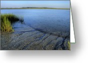 Folly Beach Lighthouse Greeting Cards - Folly Beach Marsh  Greeting Card by Dustin K Ryan