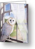 Owl Drawings Greeting Cards - Ghost In The Attic Greeting Card by Amy S Turner