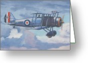 Murray Mcleod Greeting Cards - Gloster Gauntlet Greeting Card by Murray McLeod