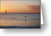 Surf Silhouette Greeting Cards -  Behold                           Greeting Card by E Luiza Picciano