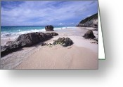 Sub Greeting Cards -  Elbow Beach Bermuda Greeting Card by George Oze