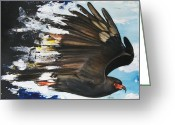Threat Greeting Cards -  Everglades Snail Kite Greeting Card by Anthony Burks