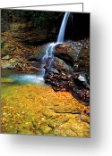 Webster County Greeting Cards -  Holly River State Park Upper Falls Greeting Card by Thomas R Fletcher