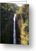 Wall Pictures Greeting Cards -  Island Waterfalls Greeting Card by Athala Carole Bruckner