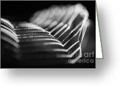 Catch Light Greeting Cards -  Light spiderweb Greeting Card by Odon Czintos