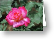 Designers Choice Digital Art Greeting Cards -  Rose Painting  Greeting Card by Don  Wright