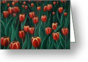 Floral Drawings Greeting Cards -  Tulip Festival Greeting Card by Anastasiya Malakhova