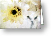 Romantic Mixed Media Greeting Cards -  White Flower Greeting Card by Linda Woods