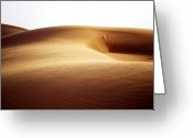 Desert Landscapes Greeting Cards - 08021 Greeting Card by Jeffrey Freund