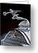 1931 Roadster Greeting Cards - 1931 Packard Deluxe Eight Roadster Hood Ornament Greeting Card by Jill Reger