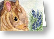 Hare Greeting Cards - A Baby Bunny Greeting Card by Angela Davies