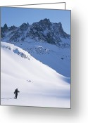 Standing Out From The Crowd Greeting Cards - A Cross Country Skier In The Selkirk Greeting Card by Jimmy Chin
