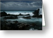 Pacific Art Greeting Cards - A Delicate Way Greeting Card by Sharon Mau