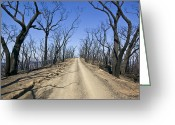 Devastation Greeting Cards - A Dirt Road Runs Along A Mountain Top Greeting Card by Jason Edwards