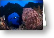 Cavern Greeting Cards - A Diver Looks On At A Giant Barrel Greeting Card by Steve Jones