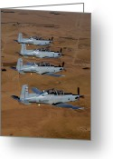 Texan Greeting Cards - A Formation Of Iraqi Air Force T-6 Greeting Card by Stocktrek Images