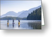 Gill Island Greeting Cards - A Group Standup Paddleboards Greeting Card by Taylor S. Kennedy
