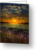 Winter Sun Greeting Cards - A New Day Greeting Card by Phil Koch