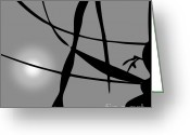 Monochromatic Greeting Cards - Abstract Reflection Greeting Card by Dave Gordon