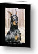 Dobe Greeting Cards - Adonis Greeting Card by Rita Kay Adams