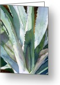 Sun Painting Greeting Cards - Agave 1 Greeting Card by Eunice Olson