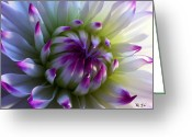 Flowers Pictures Greeting Cards - All In Greeting Card by Louie Rochon