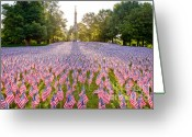Suffolk County Greeting Cards - American Flags Greeting Card by Susan Cole Kelly