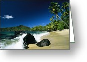 French Polynesia Greeting Cards - Anaho Bay With Coconut Palms Greeting Card by Tim Laman
