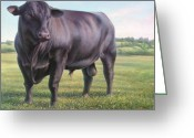 Cattle Greeting Cards - Angus Bull Greeting Card by Hans Droog