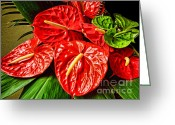 Office Art Greeting Cards - Anthurium  Greeting Card by Cheryl Young