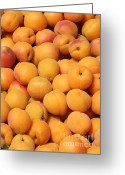 Apricots Photo Greeting Cards - Apricots Greeting Card by Carol Groenen