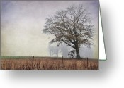 Rural Landscapes Greeting Cards - As The Fog Sets In Greeting Card by Jan Amiss Photography