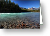 Canada Digital Art Greeting Cards - Athabasca River in Jasper National Park Greeting Card by Mark Duffy