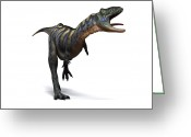 Theropod Greeting Cards - Aucasaurus Dinosaur, Artwork Greeting Card by Sciepro