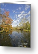 Somerset Greeting Cards - Autumn Colors on the Delaware and Raritan Canal Greeting Card by David Letts