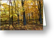 Christine Hafeman Greeting Cards - Autumn Day Greeting Card by Christine Hafeman
