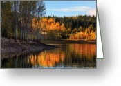 Aspen Trees Greeting Cards - Autumn in the Wasatch Mountains Greeting Card by Utah Images